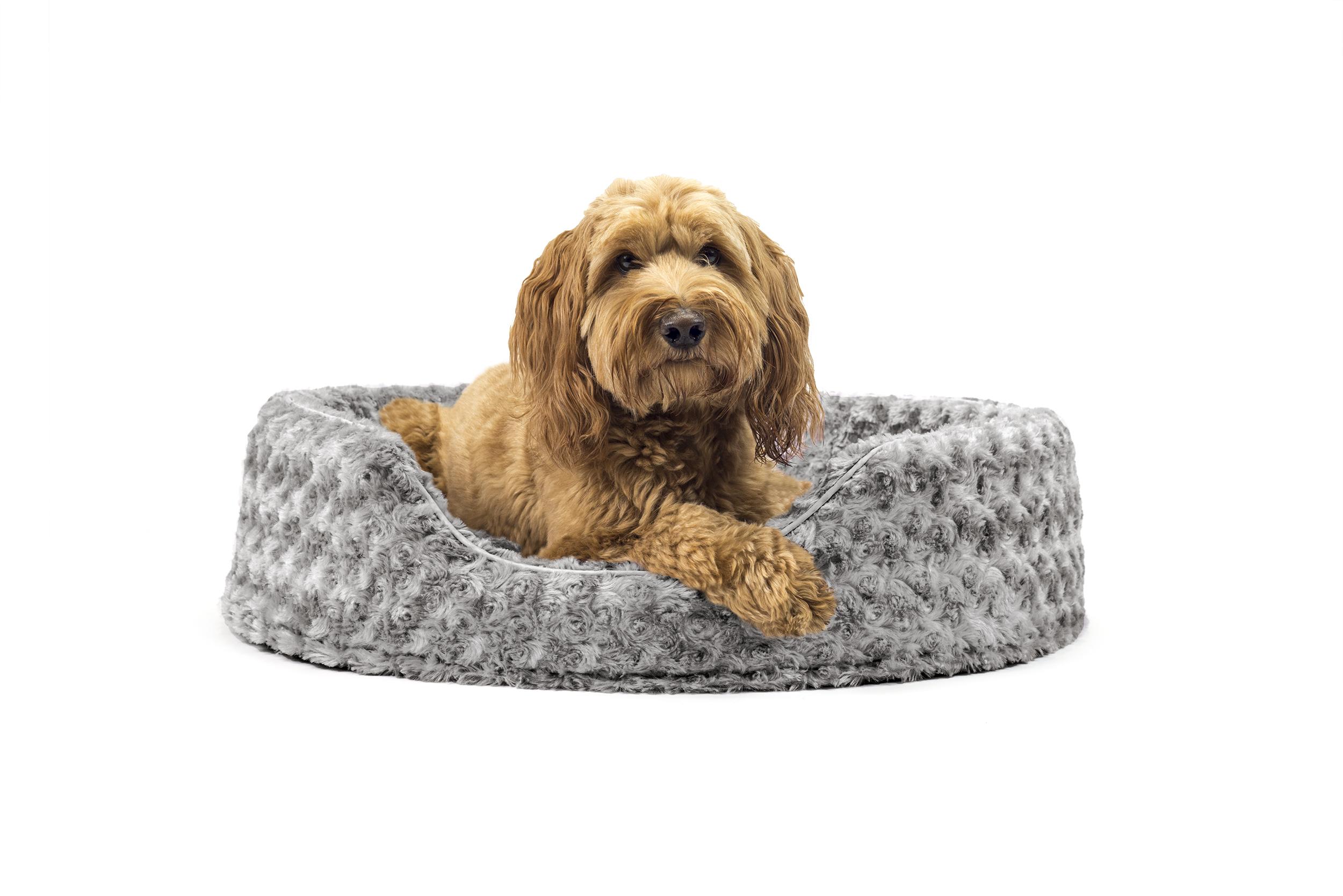 Fur Resistant Dog Bed