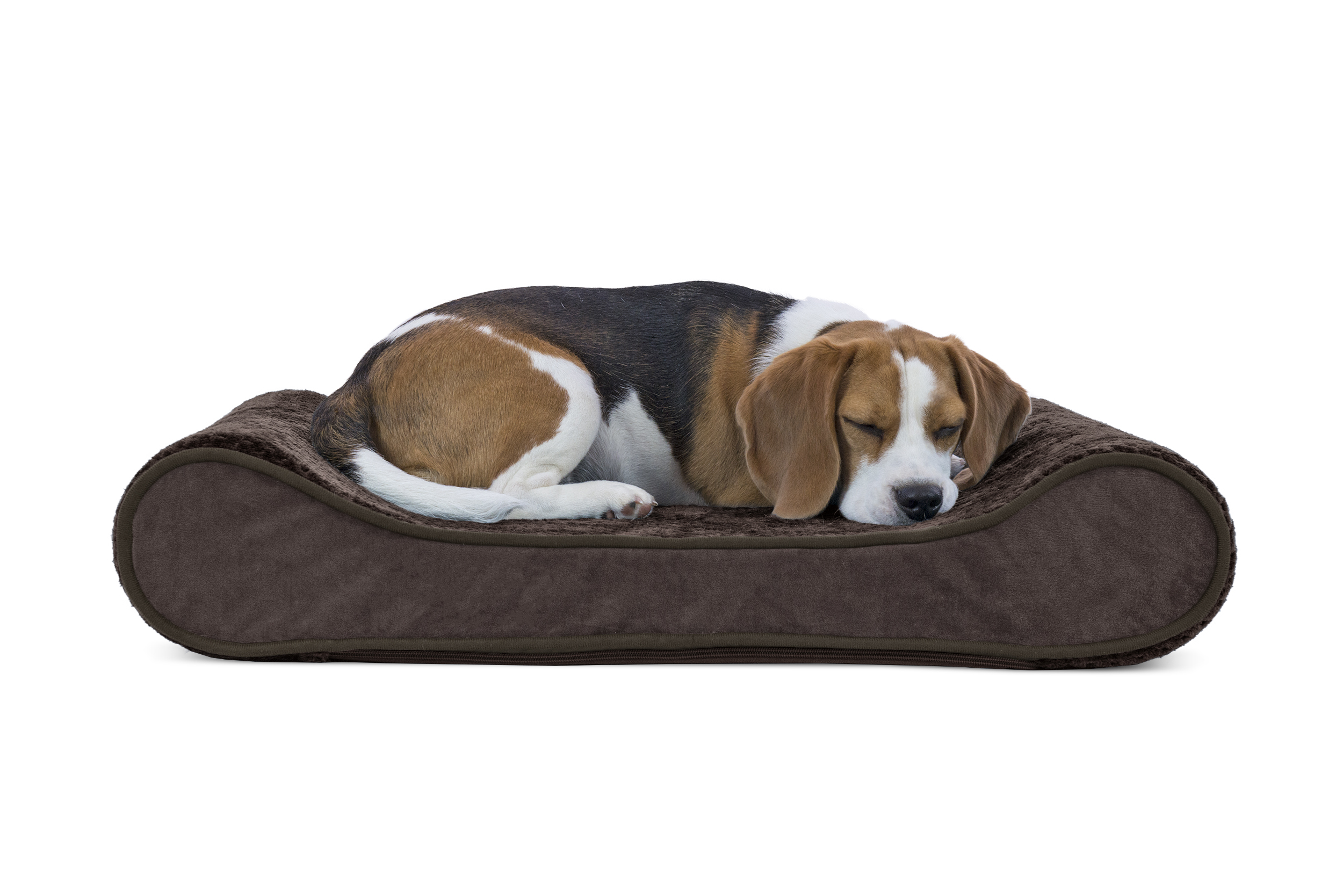 lounger petco life grey pillowtop beds for dog bedding bed shop center stages harmony en petcostore and category orthopedic all
