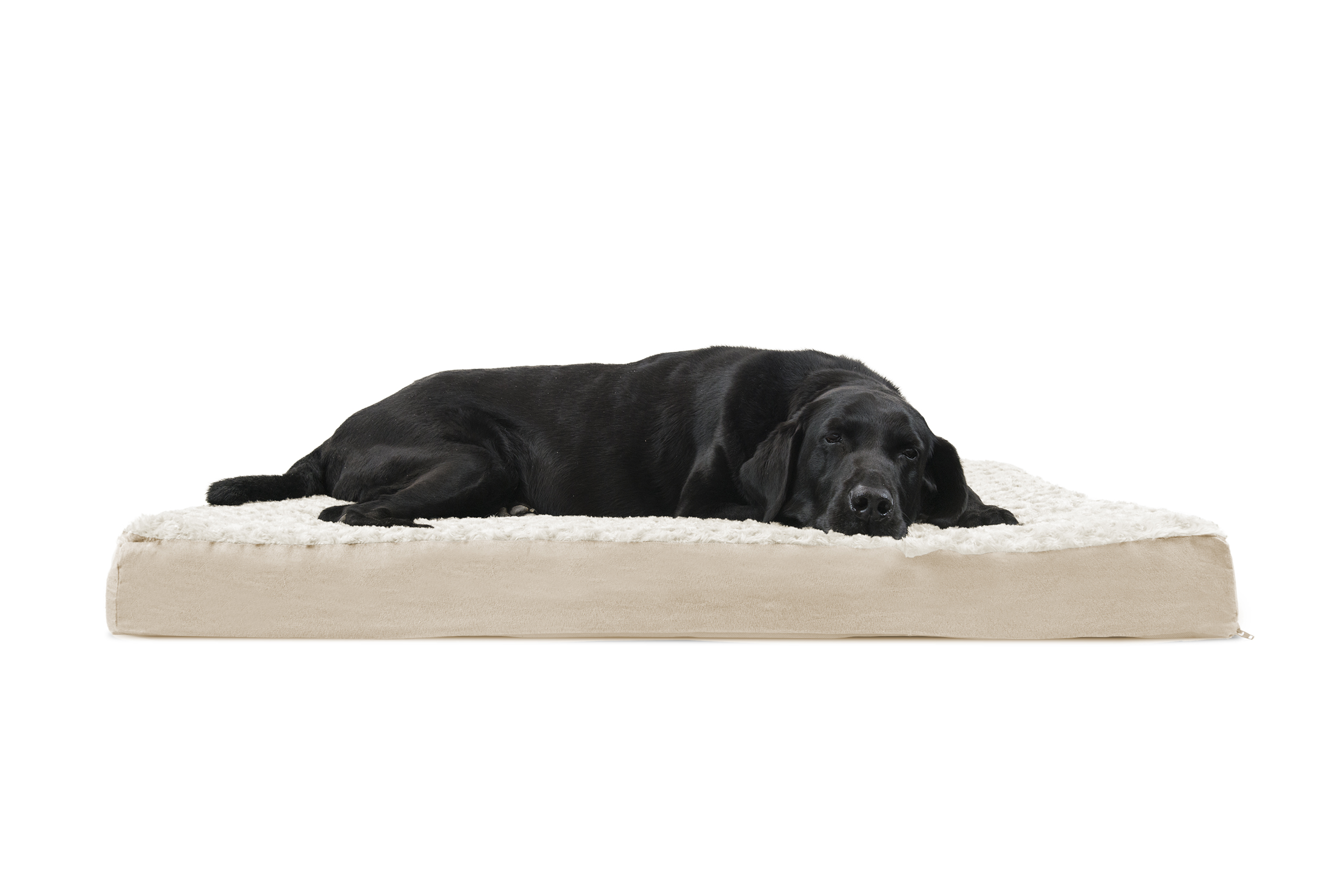 dog lounger luxe microvelvet pet furhaven orthopedic contour bed p of picture gray jumbo beds