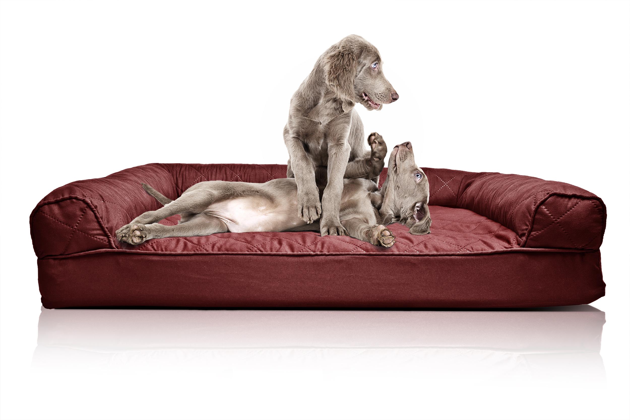 furhaven quilted orthopedic sofa dog bed pet bed ebay. Black Bedroom Furniture Sets. Home Design Ideas