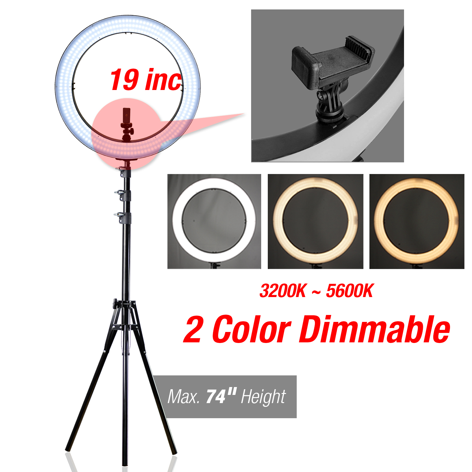 Dual Color Dimmable LED Ring Light Lusana Studio Stand Lighting Kit Youtube Live