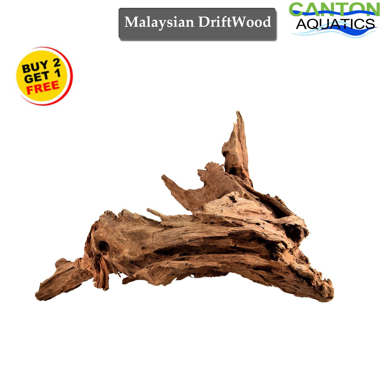 == Malaysian DriftWood Aquascape for Live Aquarium Plants ...