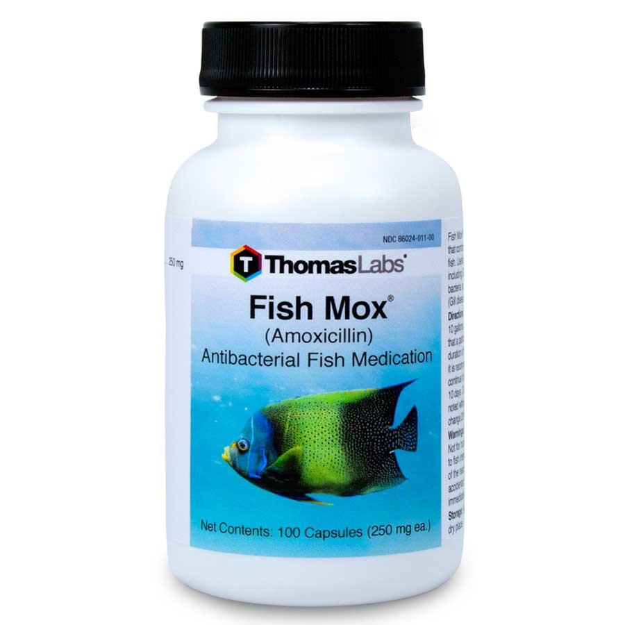 Fish Mox 250mg Antibiotics Amoxicillin Thomas Labs