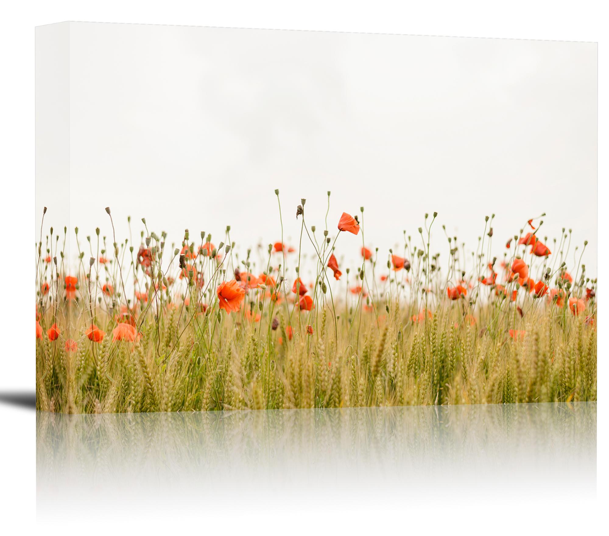 Red Poppy Flowers Wheat Field Art Print Wall Decor - Canvas ...