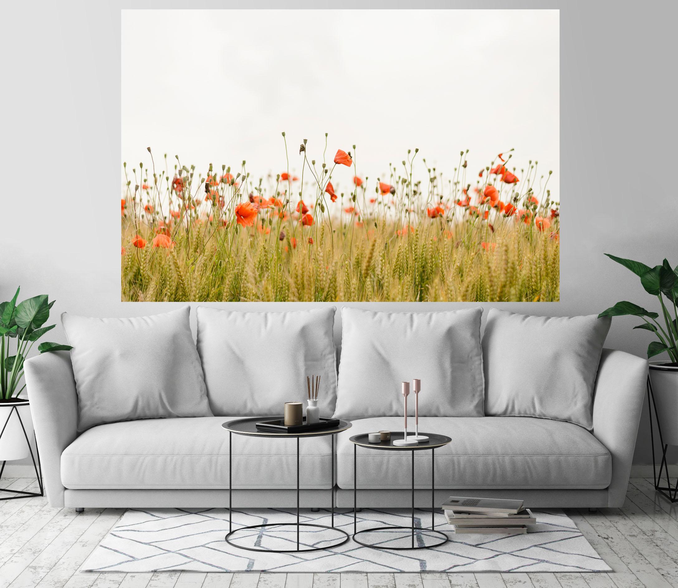 Red Poppy Flowers Wheat Field Art Print Wall Decor Image Detail