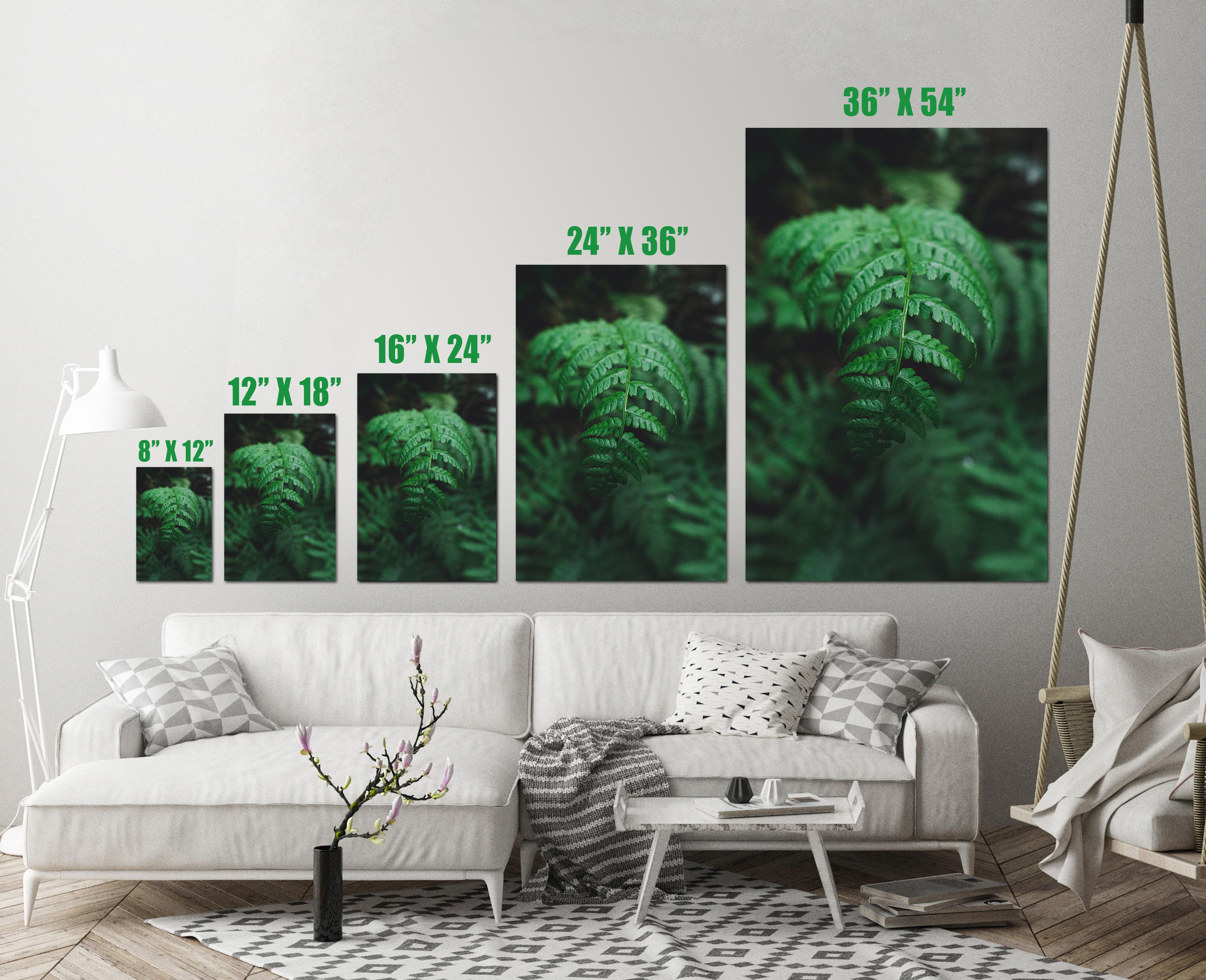 Fern Leaf Plant Close Up Green Nature Art Print Wall Decor Image