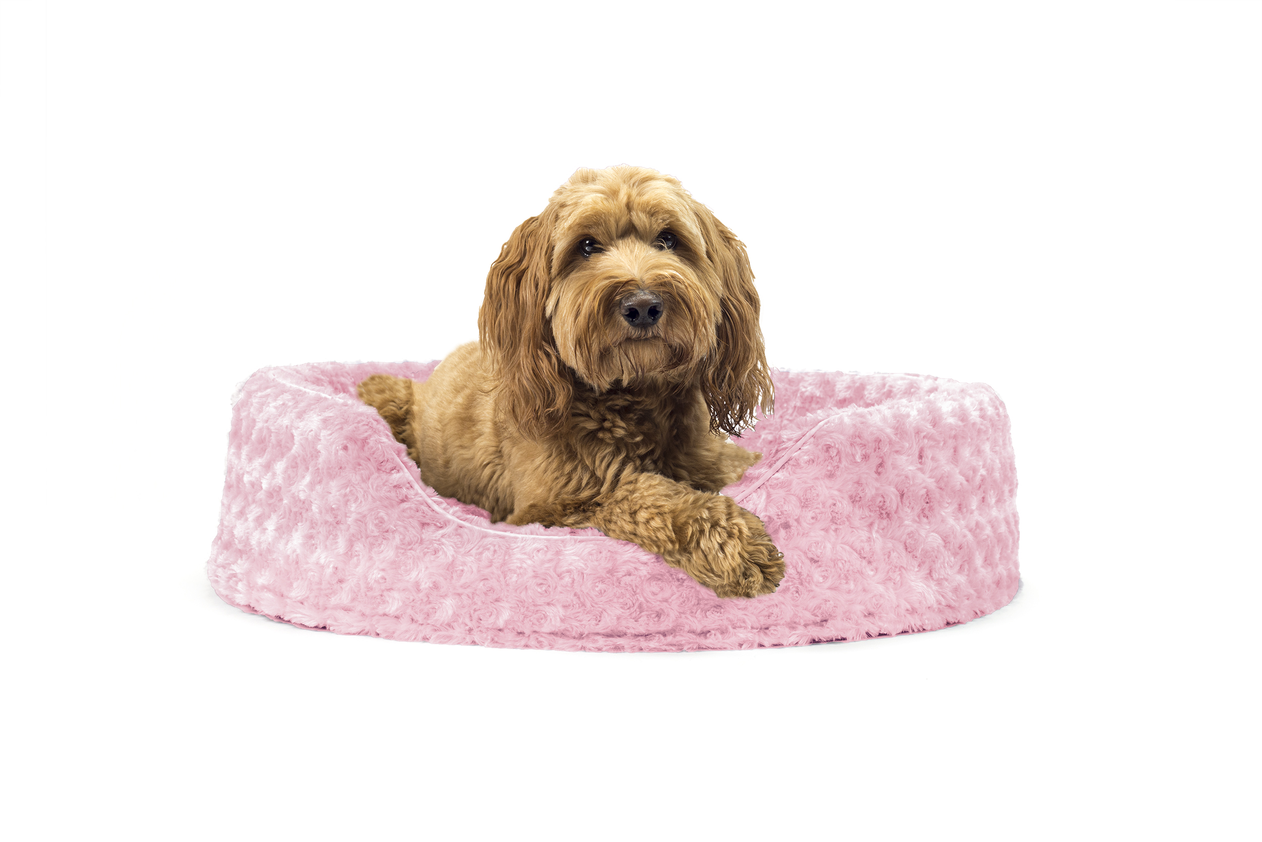 cover birdsong and dogs in fantastic cats uncategorized beds water pls on within covers bed heavy removable pinterest size with full dog amazing of duty orthopedic