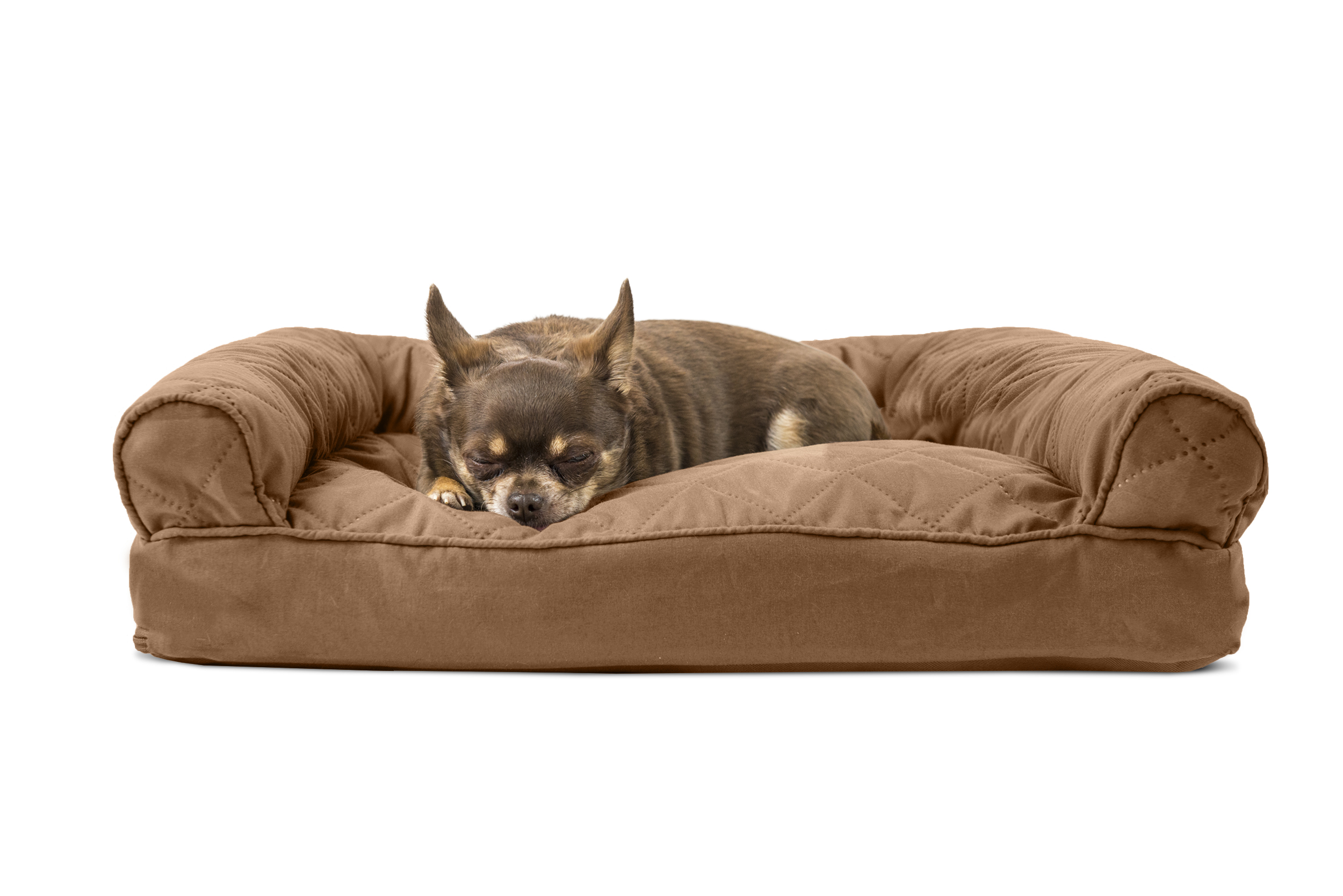Quilted sofa pet bed wwwenergywardennet for Wow sofa bed