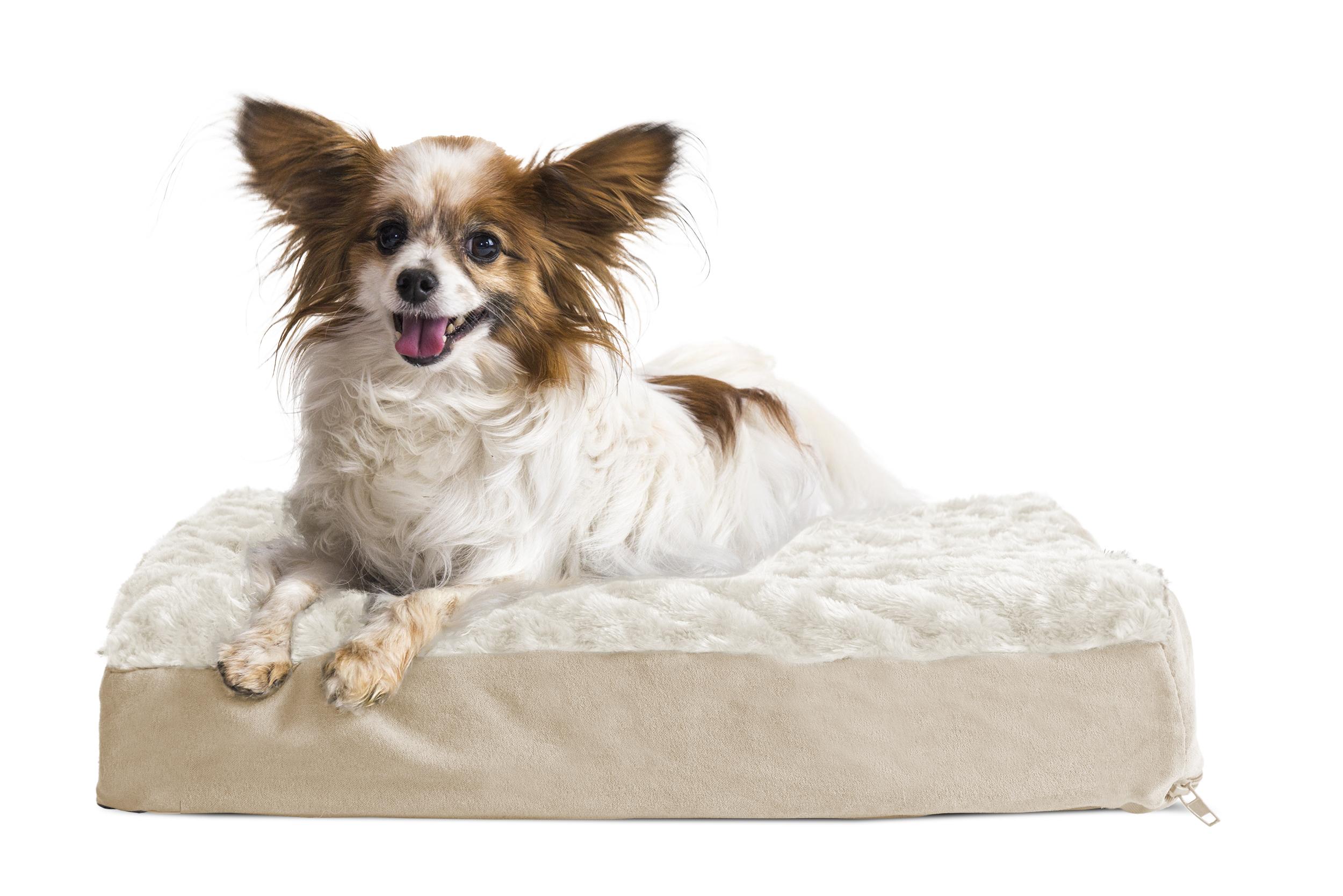 large slip size crate waterproof with dp foam pet supplies mat memory bottom bed topper pillow com dog xxl anti amazon