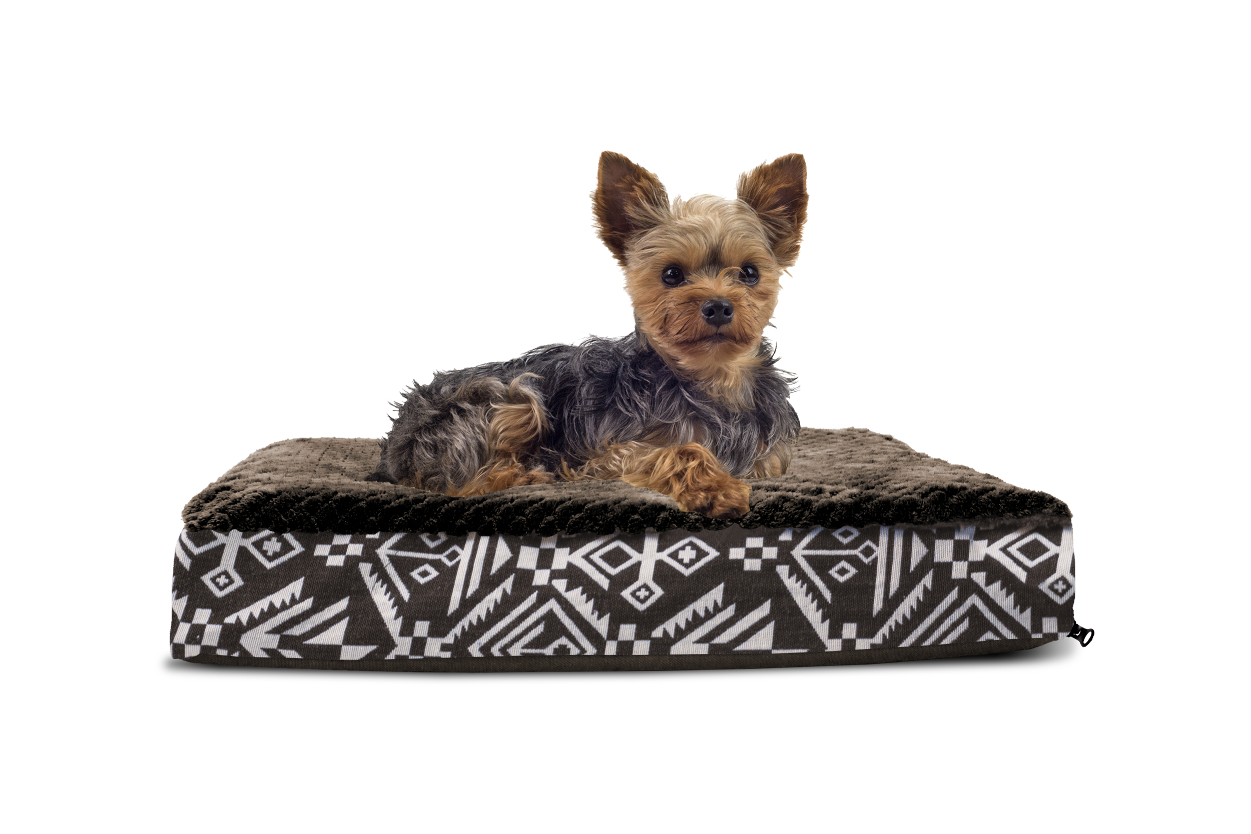 club in orthopedic and bed beds available gg foam dog qq products memory to pet go