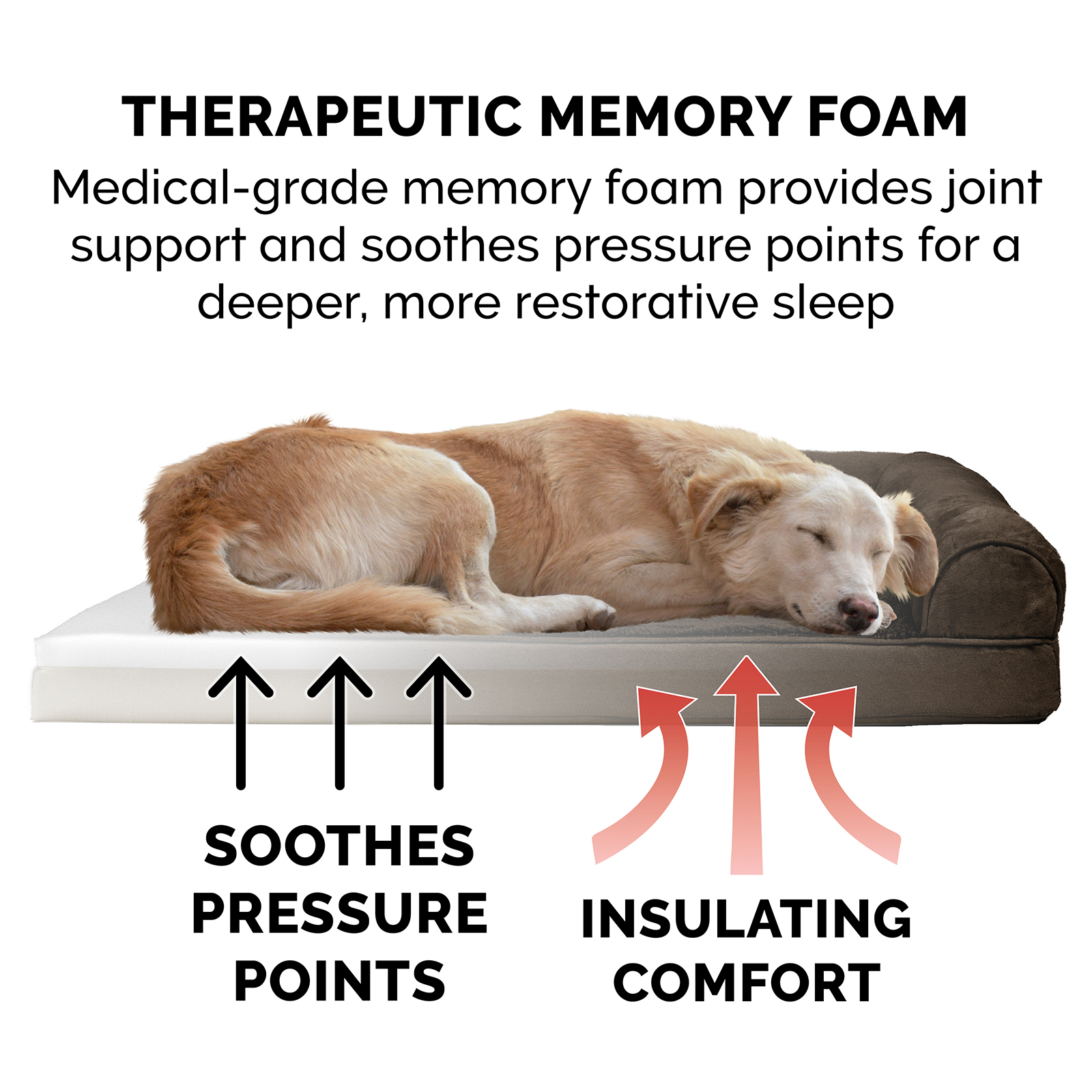 Furhaven Pet Plush Amp Suede Sofa Dog Bed Ebay
