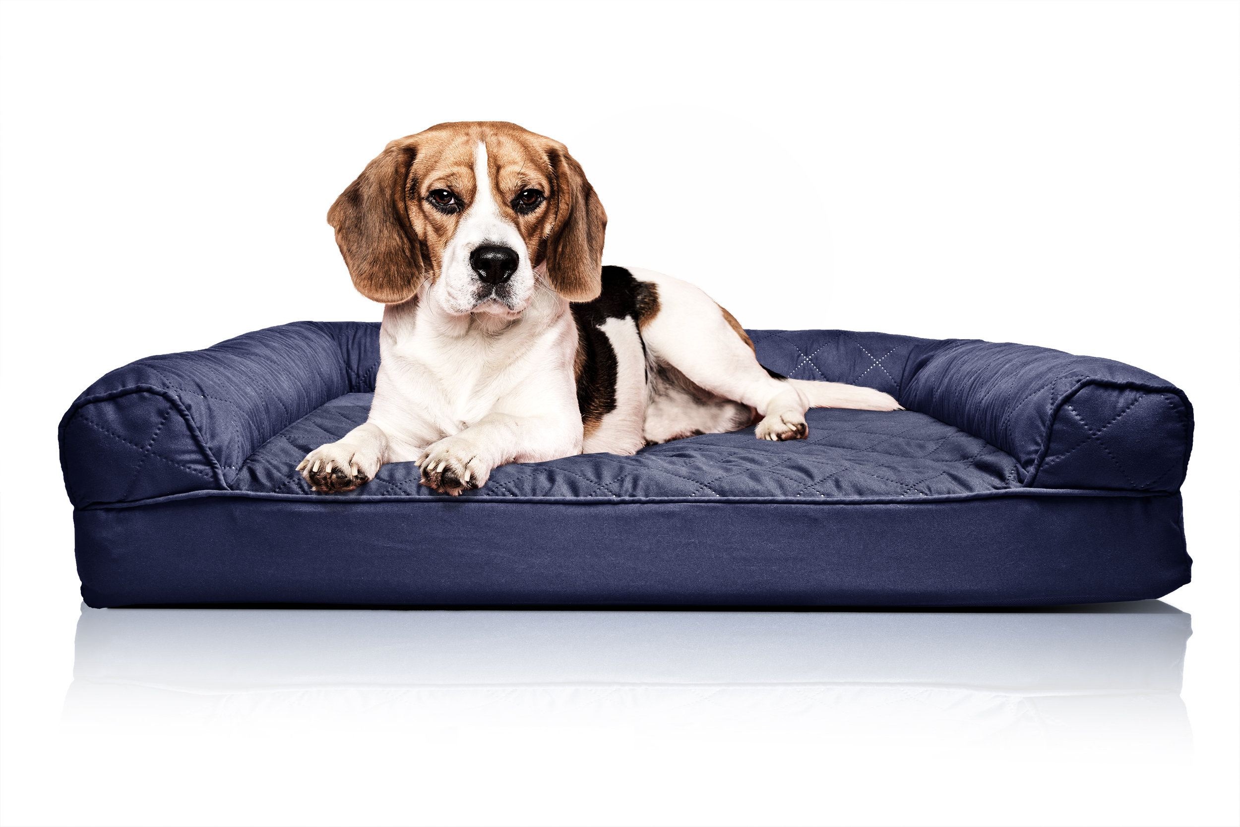 FurHaven Quilted Orthopedic Sofa Dog Bed Pet Bed; Picture 2 Of 9 ...