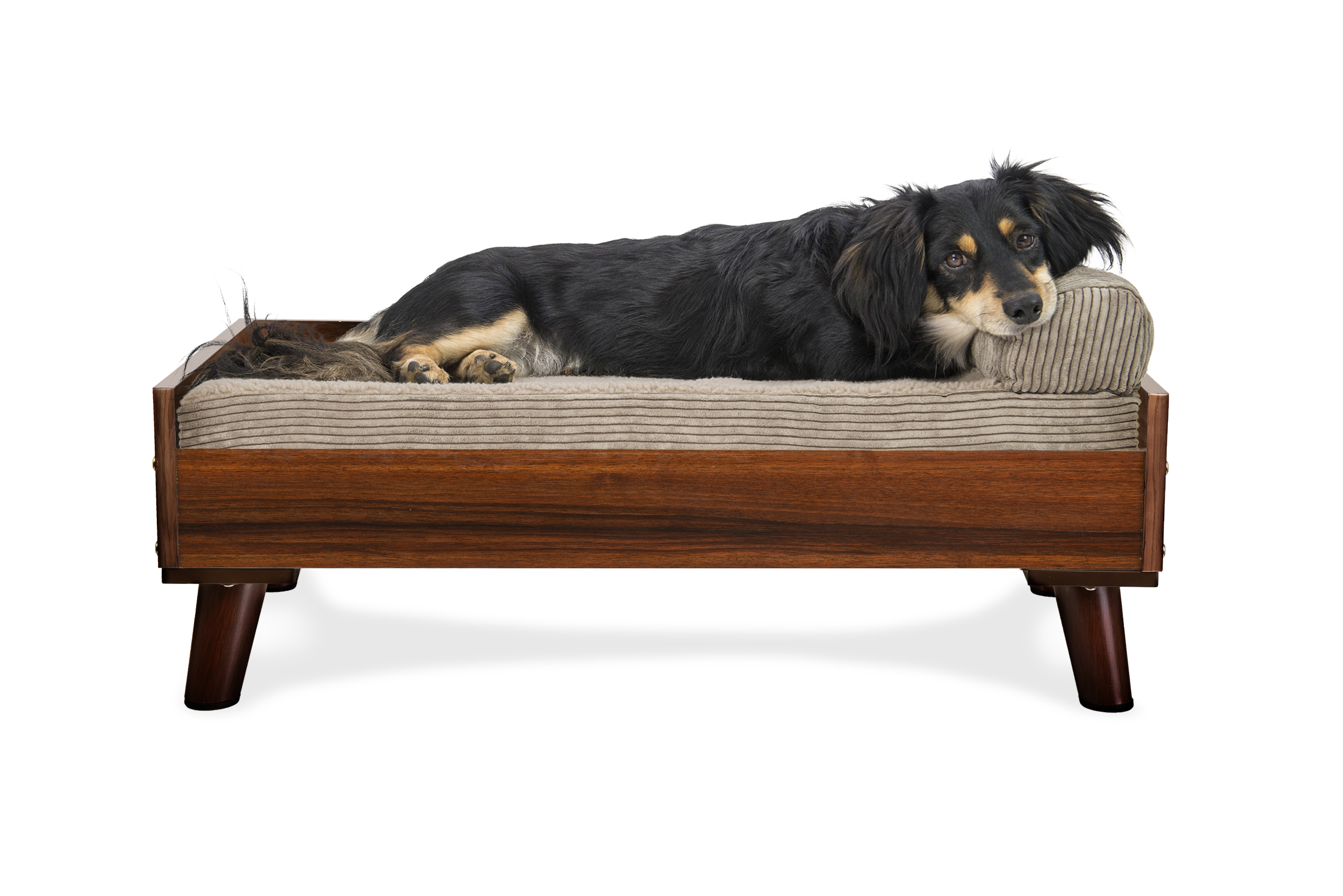 Elevate your pets comfort with this furhaven modern look pet bed frame whatever color you choose you and your pet are sure to love