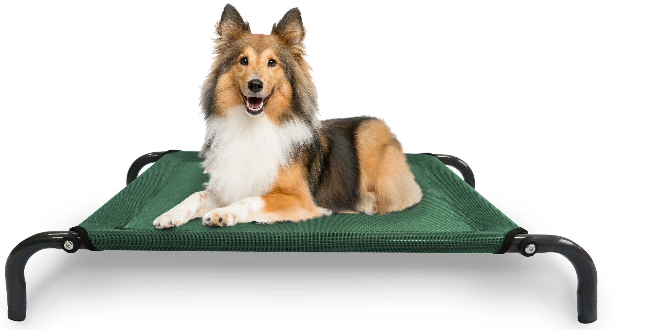 /pet-dog-beds