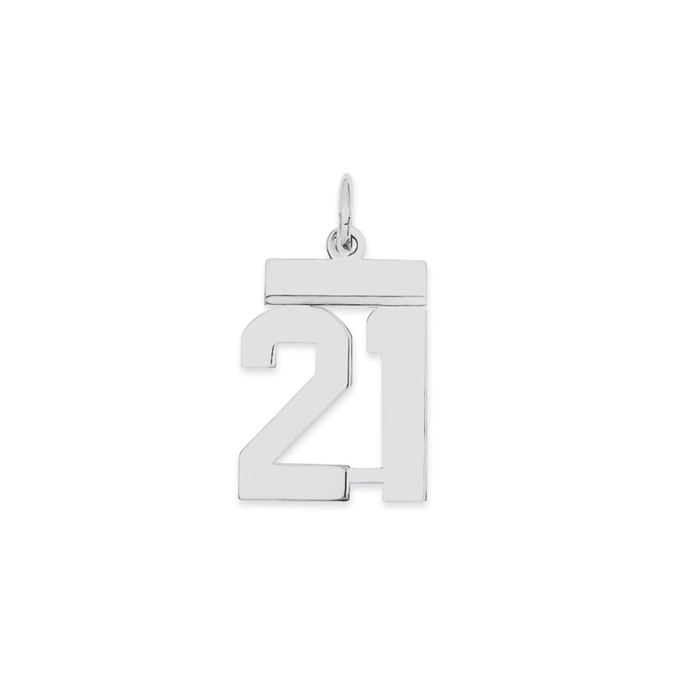 925 Sterling Silver Pink Birth Certificate Polished Charm and Pendant