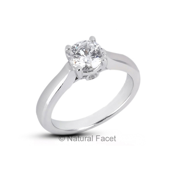 0.36ct tw E VS2 Ideal Round AGI Certify Diamonds White gold Cathedral Ring 2.8mm