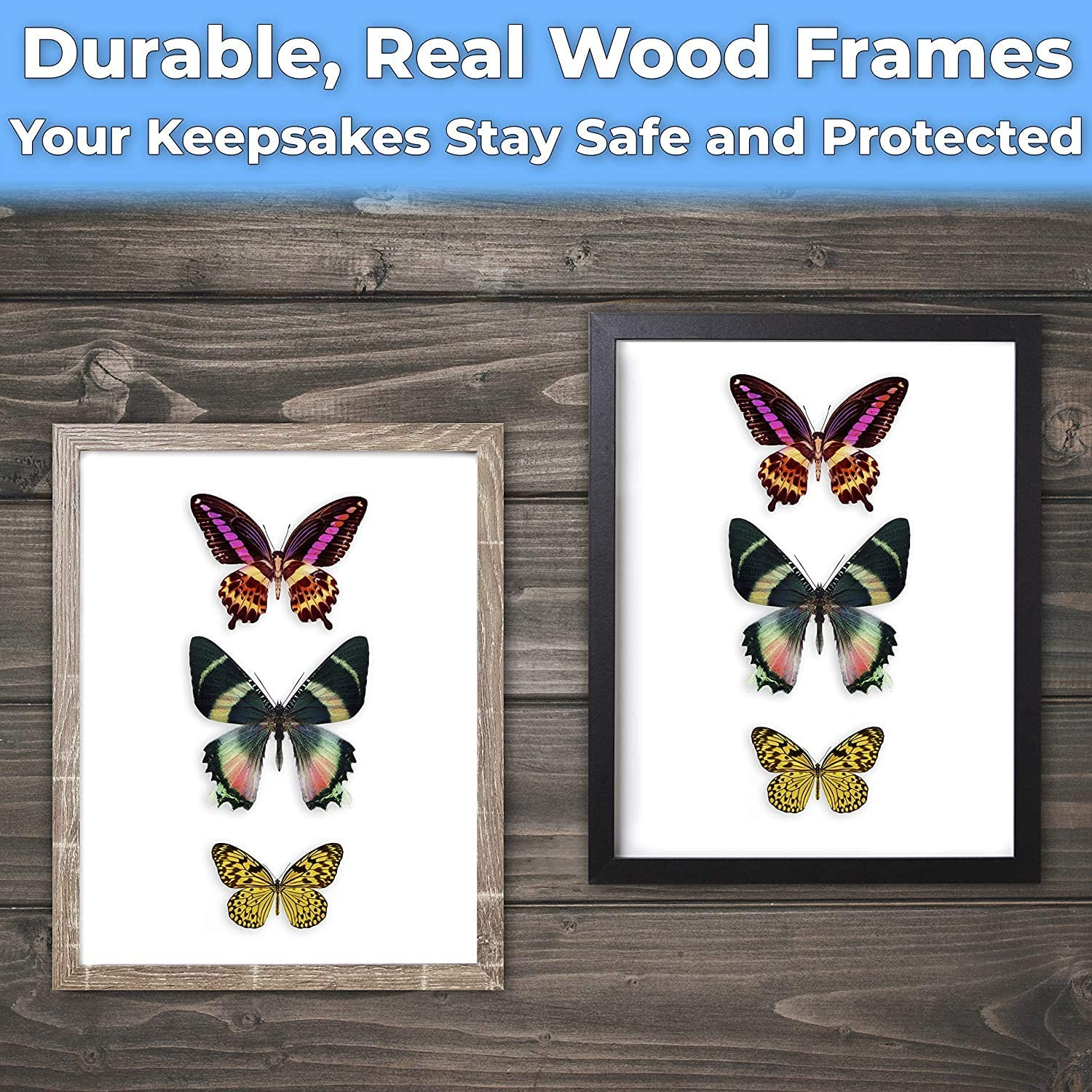"""miniature 13 - [8x8 12x12] Shadow Box Display Case 1"""" Depth Wood Picture Frame by Eucatus"""