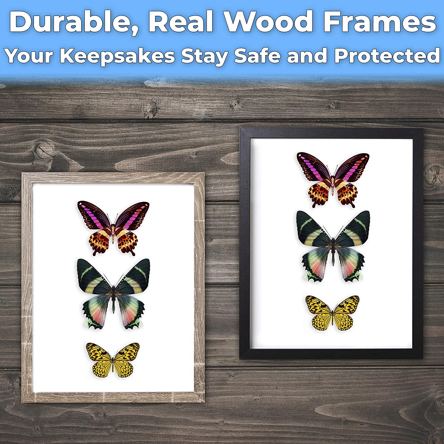 """miniature 26 - [8x8 12x12] Shadow Box Display Case 1"""" Depth Wood Picture Frame by Eucatus"""